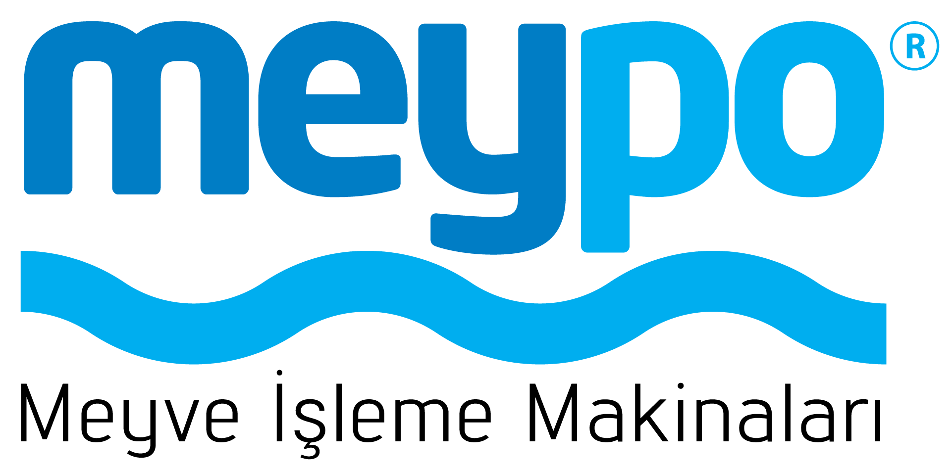 Meypo Positive Cavity Pumps